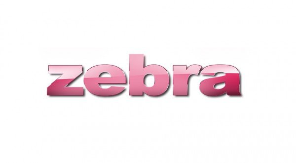 zebra-fashion_logodesign